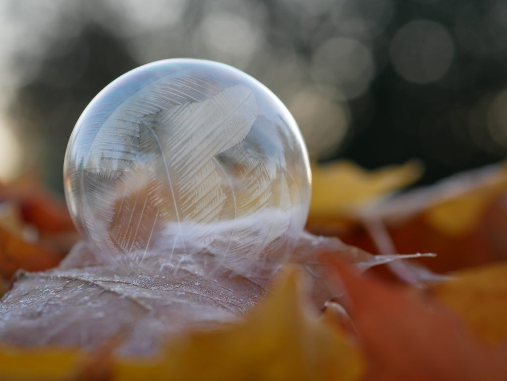 self care bubble with frost on bed of fall leaves