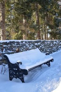 bench-229451_640