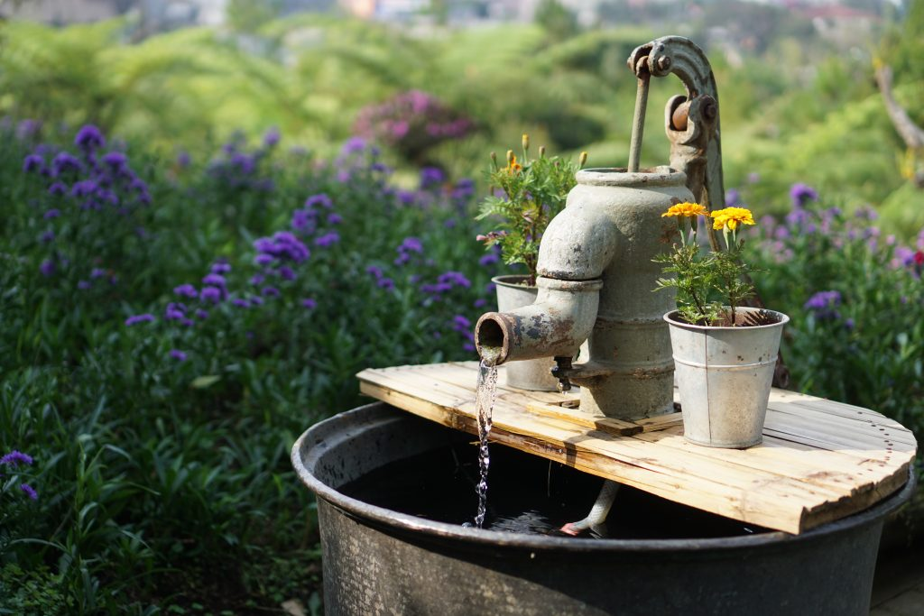 Prime the pump. Old fashioned water pump in field of flowers.